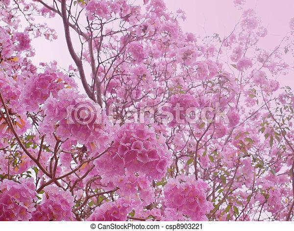 Pink sweet dream feeling