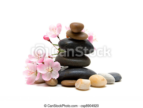 Zen / spa stones with flowers isolated on white background - csp8904920