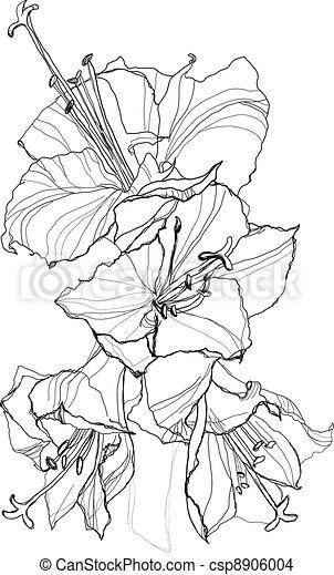eps vektor von hibiskus blume bleistift zeichnung auf wei es csp8906004 suchen sie. Black Bedroom Furniture Sets. Home Design Ideas