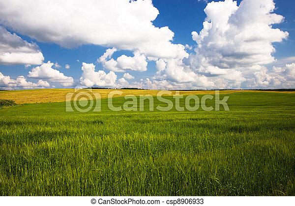 Agriculture - csp8906933