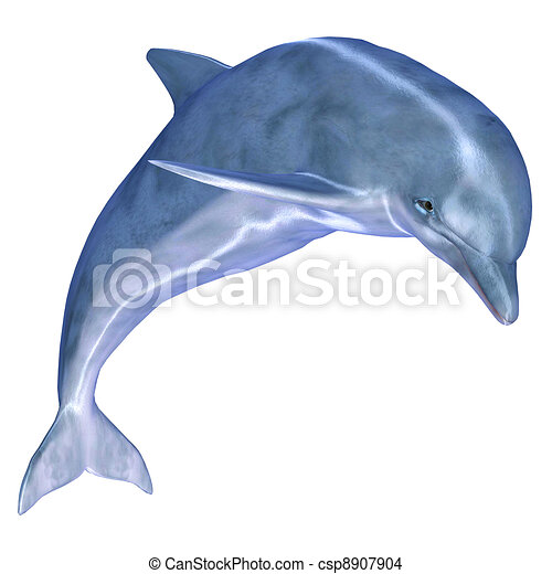 Tekening van dolfijn - illustratie, van, Een, dolfijn ...