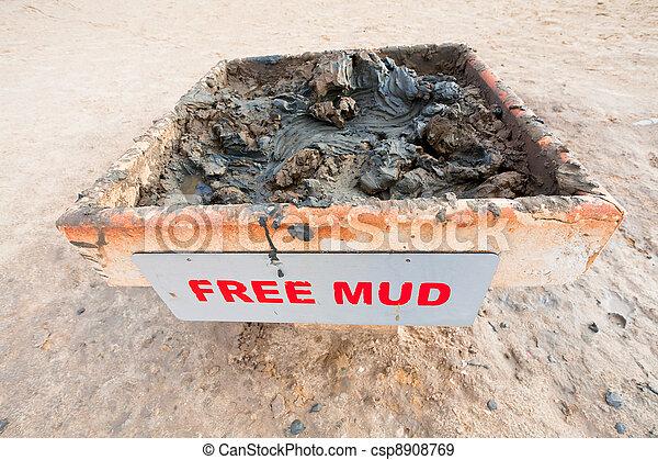 free mud on coast of Dead Sea - csp8908769