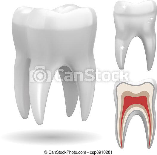 Excellent Vector Tooth - csp8910281