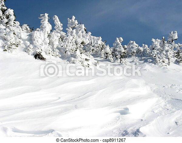 high winter snow drifts