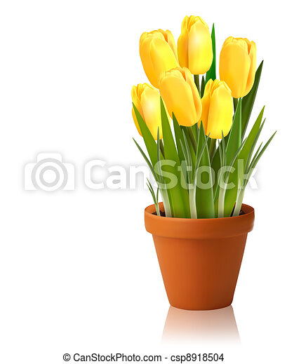 Fresh spring yellow flowers  Vector - csp8918504