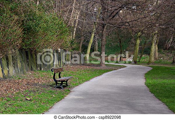 eenzaam, Begraafplaats, bankje - csp8922098