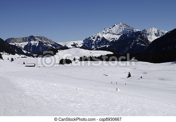 The snowed Plateau des Gli?res, hotbed of french Resistance, near Annecy. France - csp8930667