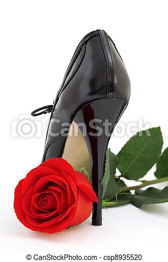 バラ, 黒, 靴, 背景, 白, 赤 - csp8935520
