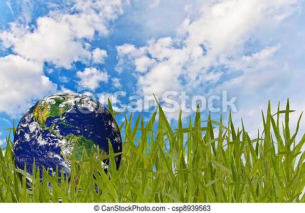 Environment concept, globe in the grass - csp8939563