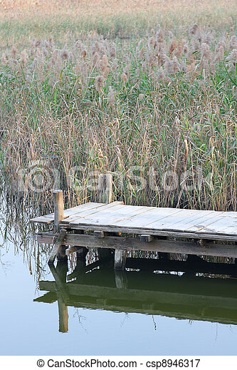 wooden pier in tranquil lake at morning - csp8946317