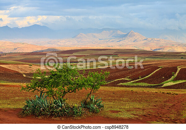 Cultivated fields in a valley - csp8948278
