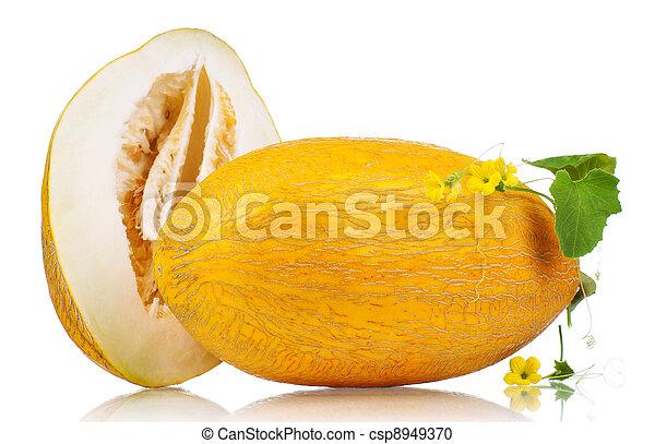 Cantaloupe melon - csp8949370