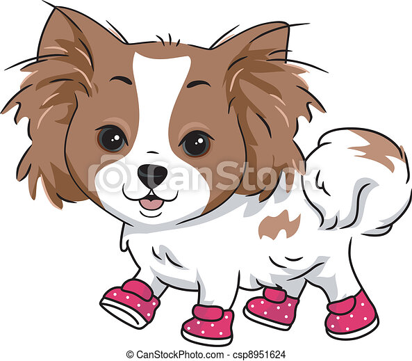 Dog Boots - csp8951624