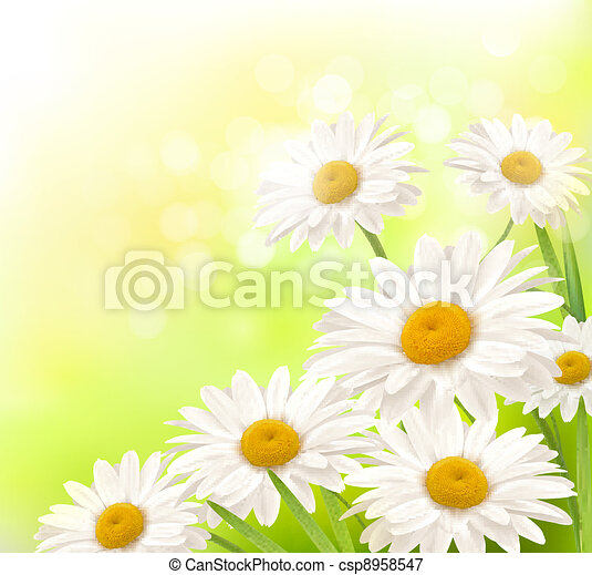 Beautiful background with grass  - csp8958547