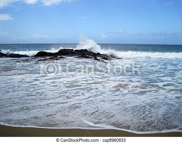 Ocean breaking on rocks - csp8960833