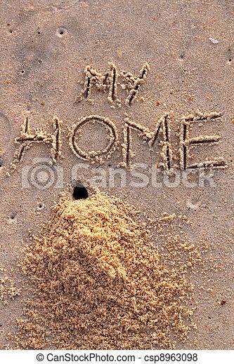 Immagini di parole sabbia mucchio granchio casa buco for Piani di casa sulla spiaggia su palafitte