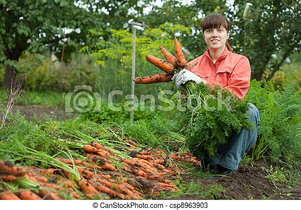woman with carrot harvest - csp8963903