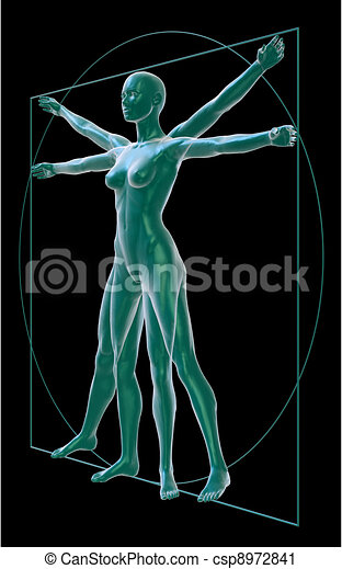 Clipart of Vitruvian woman perspective-black - 3D Rendering of a ...