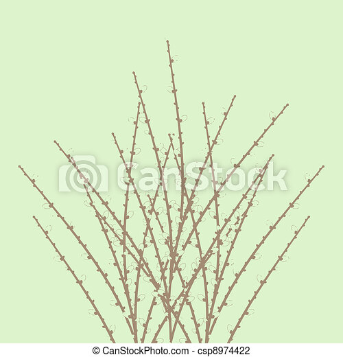 Spring Willow Twig - csp8974422
