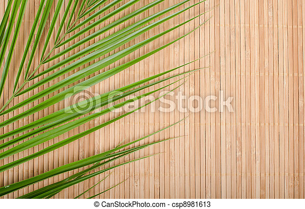 Stock Photos Of Background From A Bamboo Rug And Palm Tree
