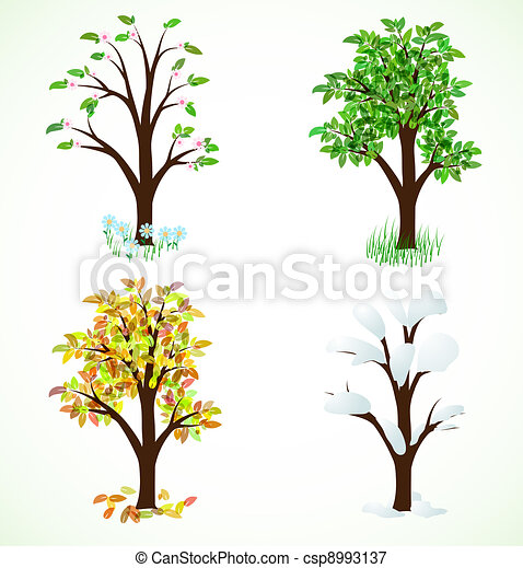 Four season trees - csp8993137