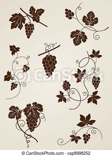 grape vine design elements - csp8998252