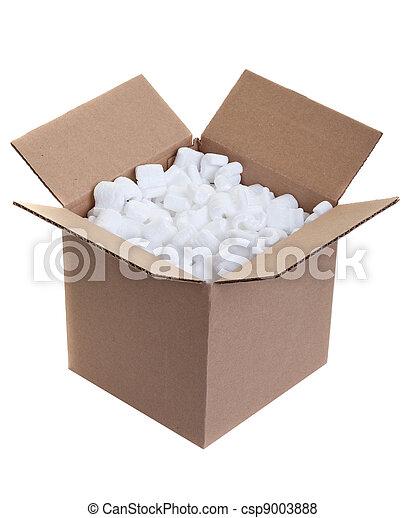 Packing box - csp9003888