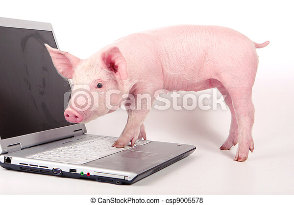 DE L'ART ...OU DU COCHON ? - Page 2 Can-stock-photo_csp9005578