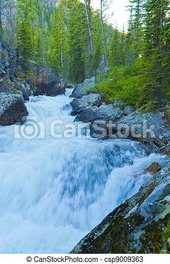 Cascade Creek Grant Teton National Park - csp9009363