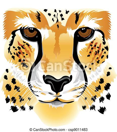 Cheetah face - csp9011483