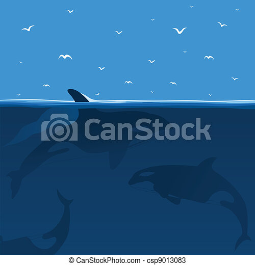 Hunting of whales - csp9013083