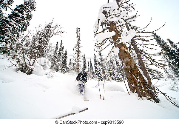 Freeride in Siberia - csp9013590