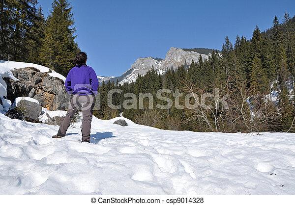 Snowy mountains in the Carpathians, Transylvania, Romania - csp9014328