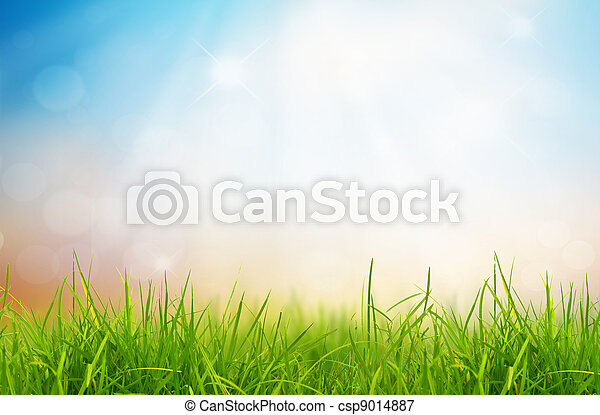 Spring nature background with grass and blue sky in the back - csp9014887