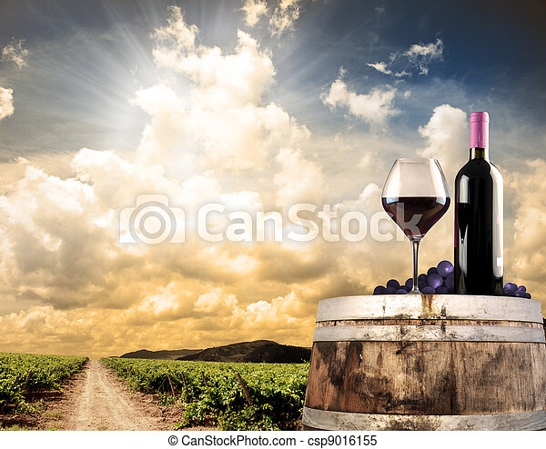 Wine still life against vineyard - csp9016155