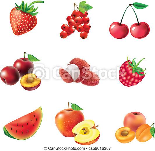 Vectors Illustration of Set of red fruits and berries ...  Vectors Illustr...