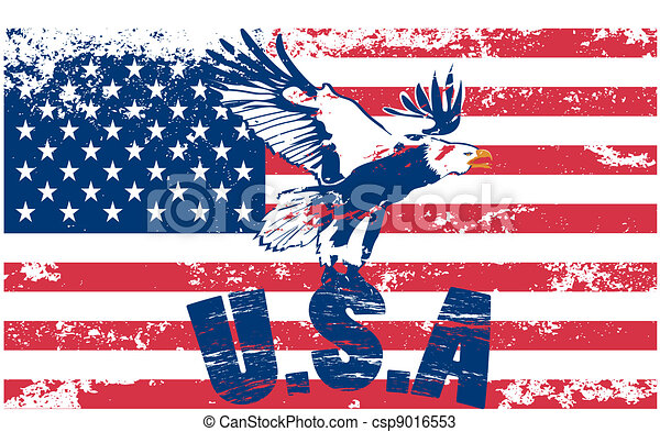 Us flag with eagle - csp9016553