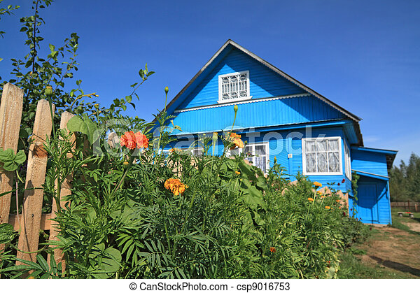 summer flowerses near rural wooden building - csp9016753