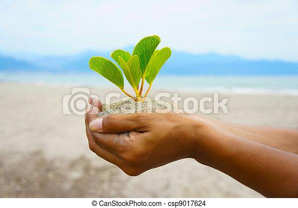 Eco Friendly - csp9017624