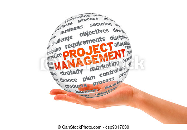 Project Management - csp9017630
