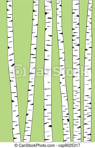 birch trunk trees background - csp9025317