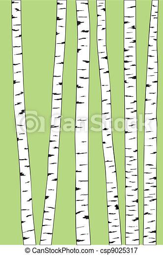 birch trunk trees background - csp9025317
