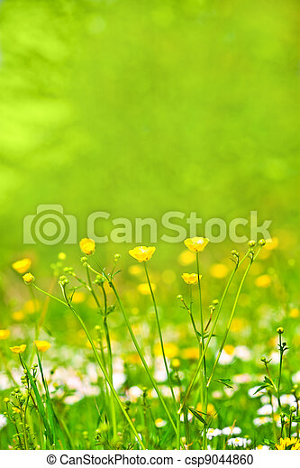 abstract background of spring grass and flowers - csp9044860