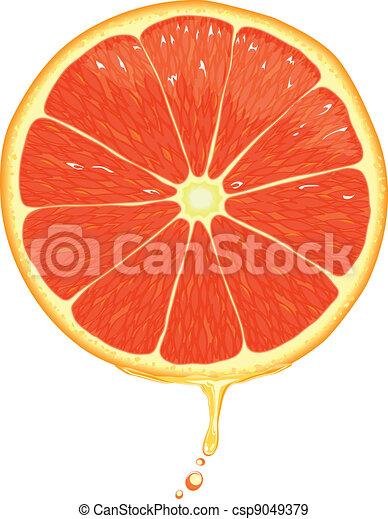 EPS Vectors of Grapefruit Slice - Vector - Illustration of a grapefruit... csp9049379 ...
