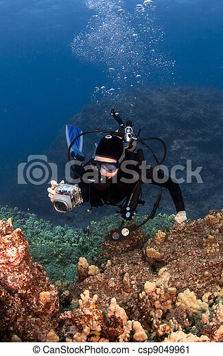 Scuba Diver Photographing the Coral - csp9049961