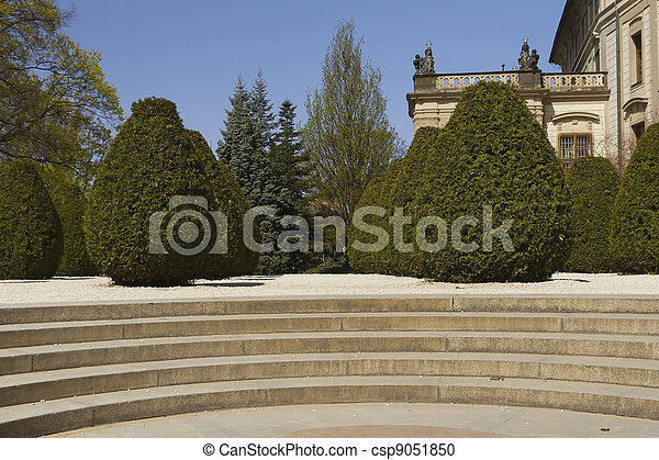 Conifers in Prague Castle Garden - csp9051850