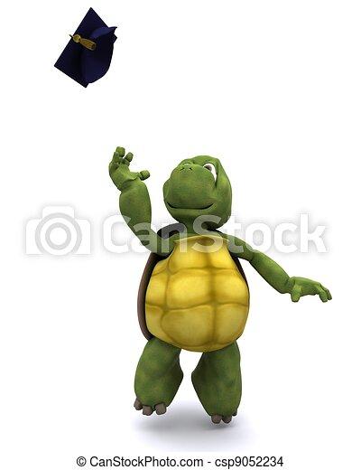 tortoise celebrating graduation - csp9052234