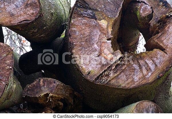 A heap of trunks - csp9054173