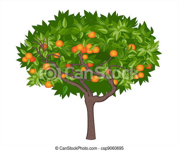 Mandarin tree - csp9060695