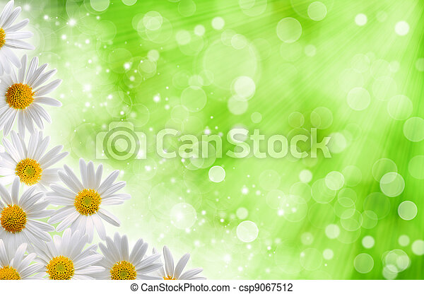 Abstract spring backgrounds with daisy flowers and blured bokeh - csp9067512